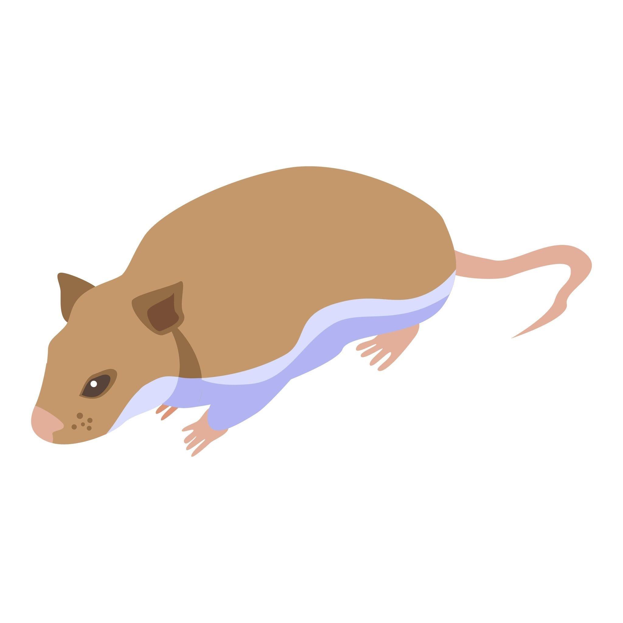 無論一般家庭或營業場所,特別是餐飲門市中最頻繁出沒小動物莫過於老鼠了,時不時咬壞物品以及偷吃東西帶來的衛生問題總是讓人頭痛不已,卡通中畫得可愛,現實生活中可一點都不討喜!