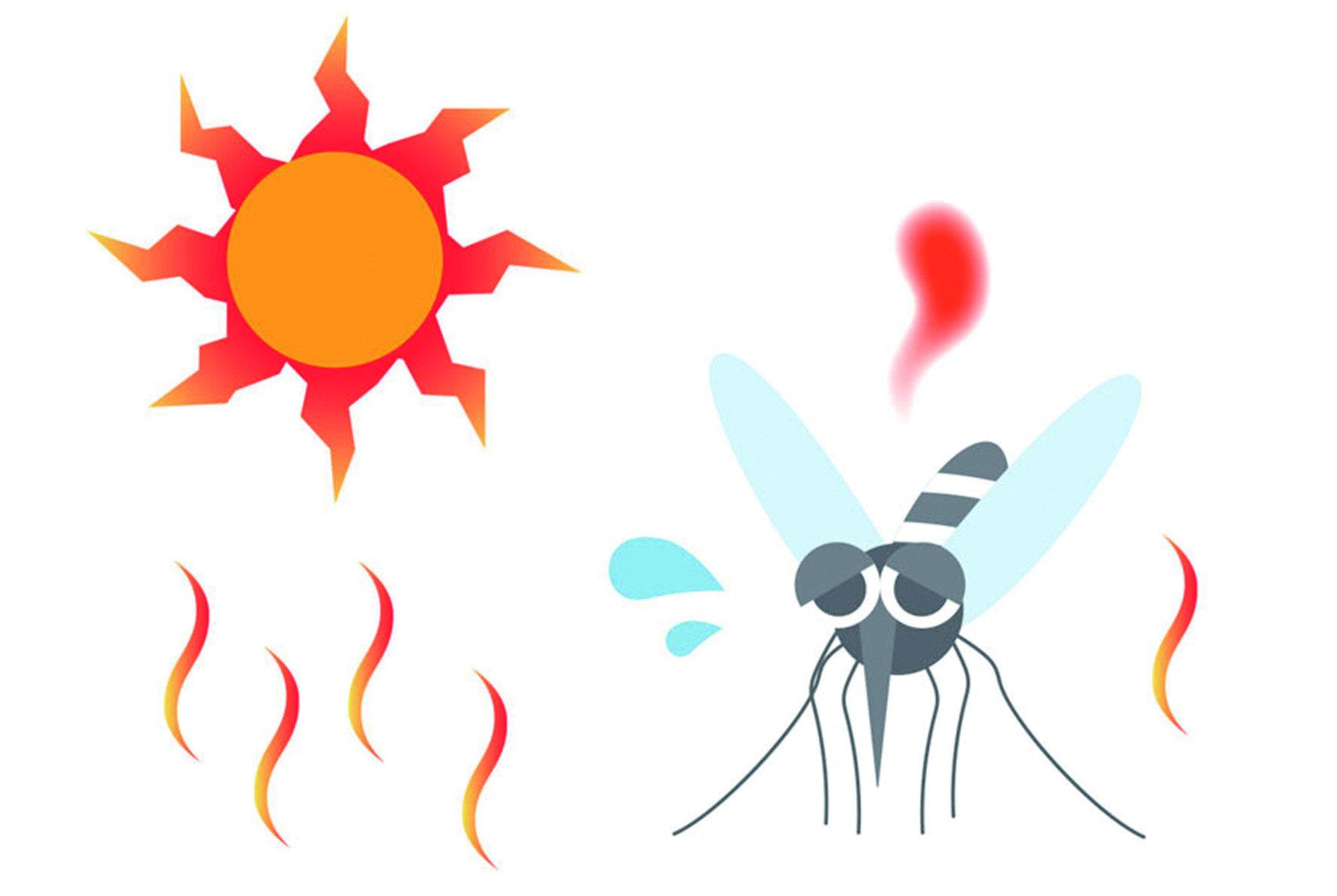夏日蚊蟲最易孳生炎炎夏日,也是各種蟲子茂盛繁殖的時候。到戶外活動,最怕被咬得又紅又腫。其中,最難防治,也最教人厭煩的,莫過於無影無蹤的小黑蚊與各種蚊子了。
