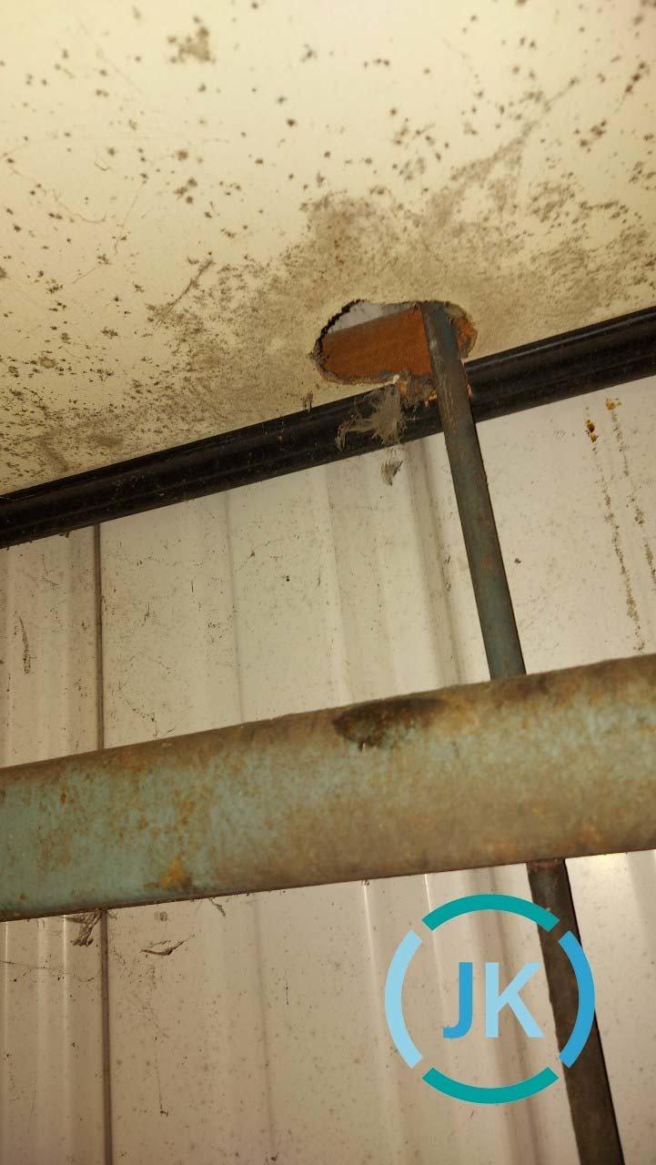 因為老鼠而咬破的孔洞,造成木板的破損