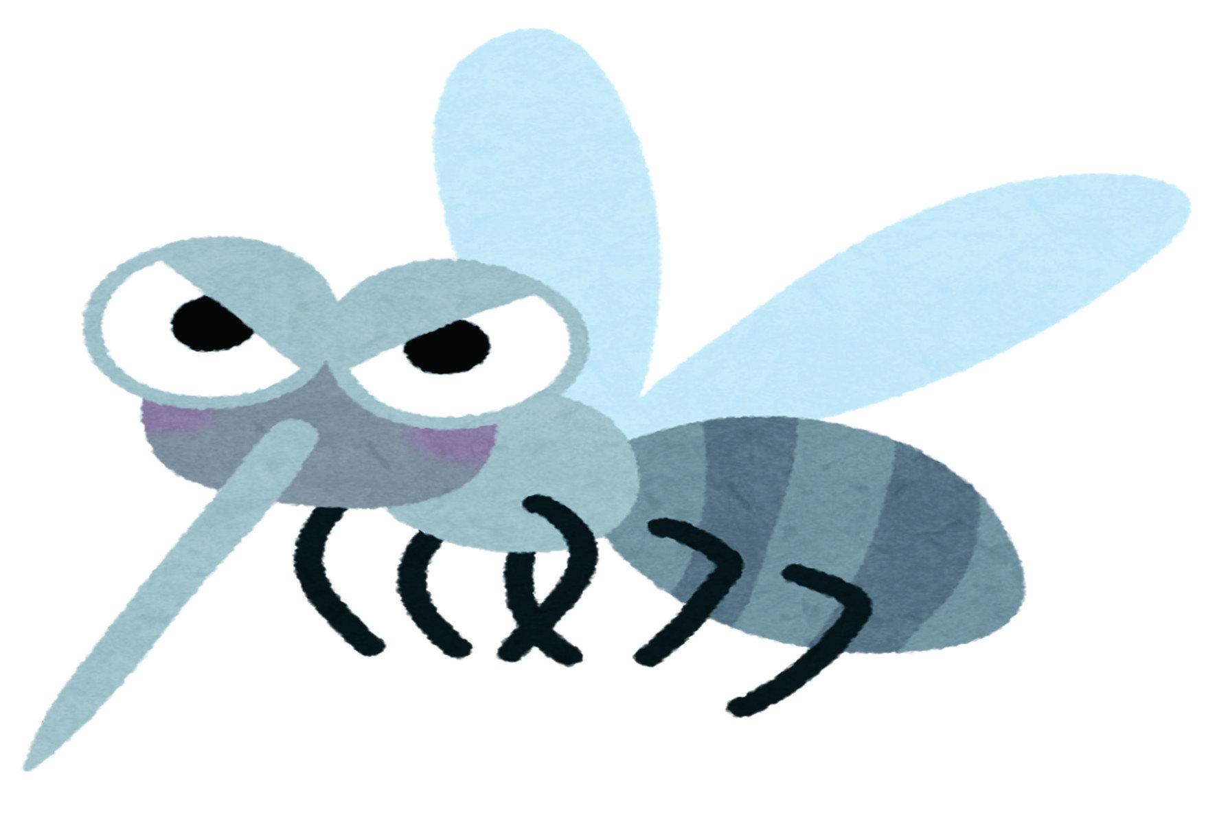地下家蚊是一種不用吸血也能產卵的蚊子,無論白天或晚上都會吸血,許多時候都躲藏在室內, 與人類一同生活。外觀為咖啡色,體型比白線斑蚊再小一些,大約只有三到七毫米。