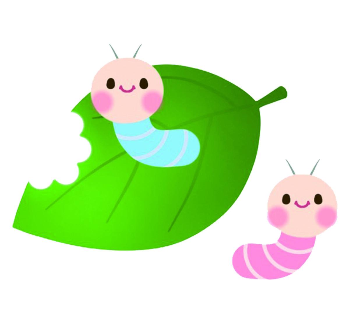 毛毛蟲其實就是「鱗翅目」昆蟲,也就是「蝴蝶類」、「蛾類」的幼蟲。 不過,因為毛毛蟲看起來有許多雙腳,令不少人感到疑惑,牠們究竟是不是昆蟲? 其實,毛毛蟲的腳只有前三對屬於真的腳,後面的幾雙腳都屬於「偽足」, 並不是真正的腳。