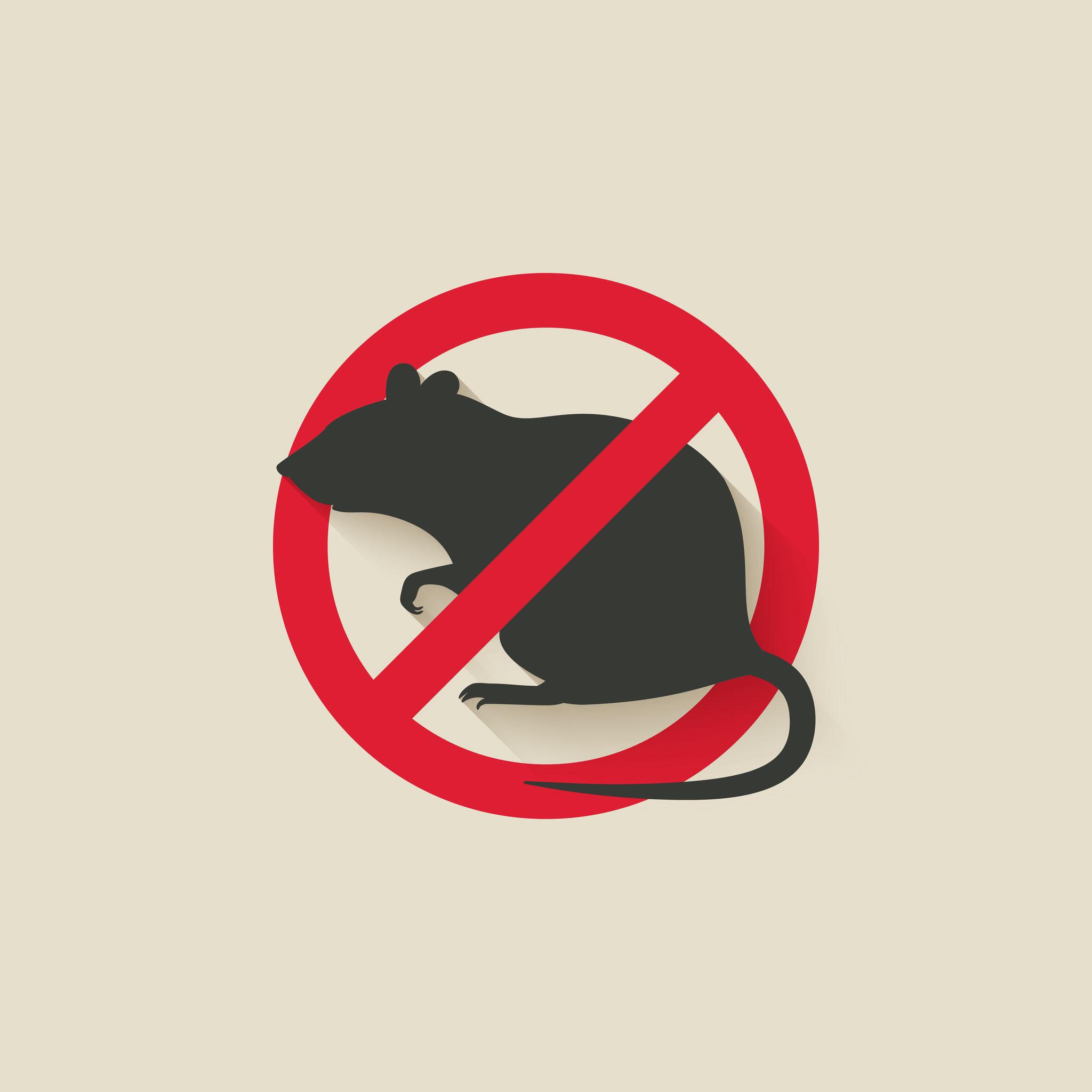 尋求具有可消滅入侵老鼠技術的專業公司,針對建築物外的環境提供良善的建議維護