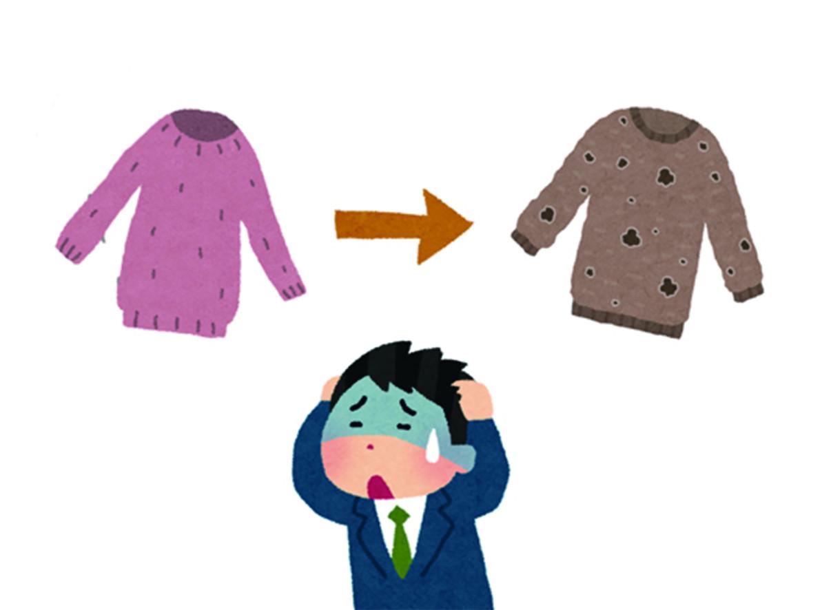 不只衣蛾啃食你的衣物!季節更替,要將過季衣物收納時,絕對要記得先確保衣物都是乾淨的,沒有遭到蟲子汙染。