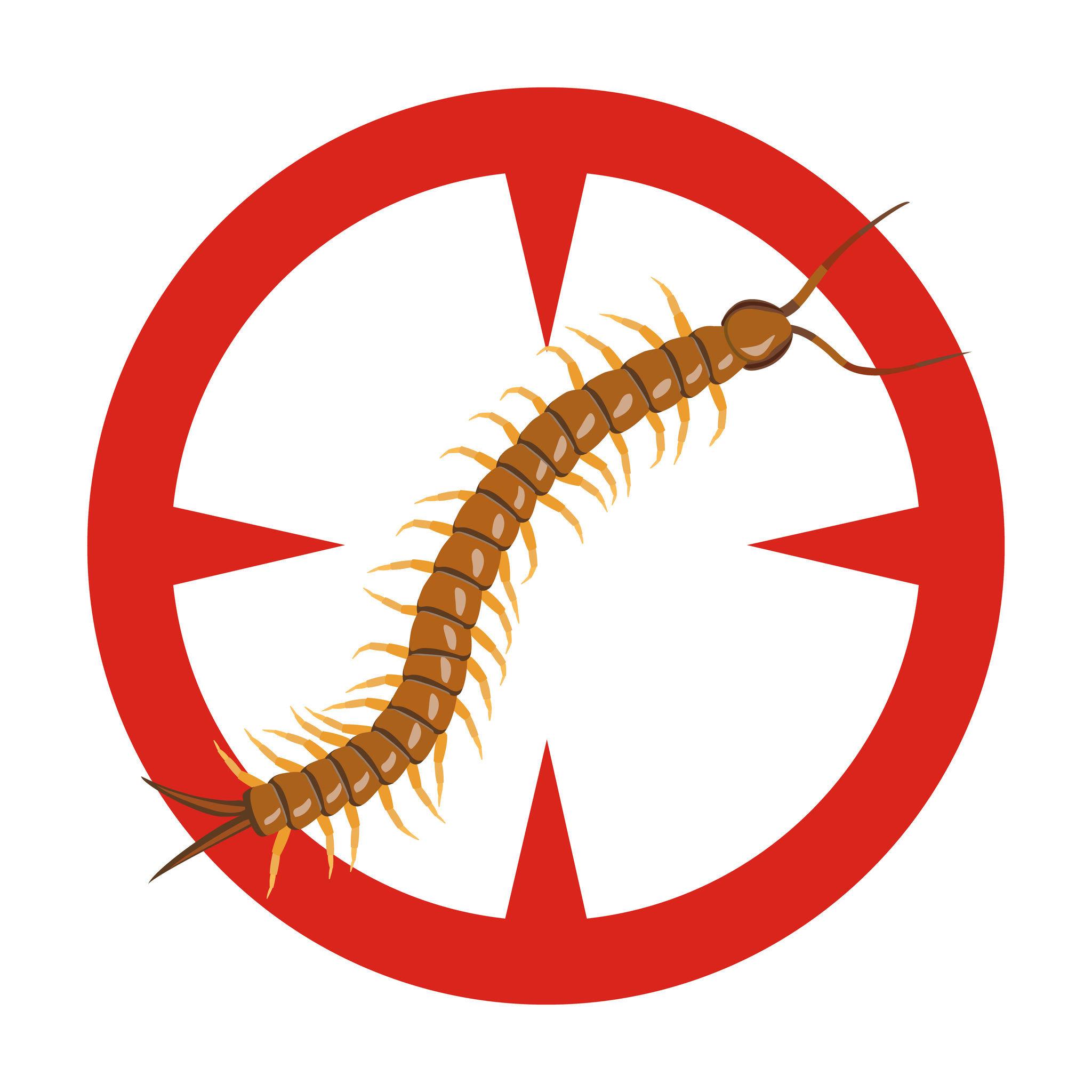 預防之道最主要是維護住家附近的清潔,以免蜈蚣藏匿。另外,針對住宅的紗網破損要即時修復。