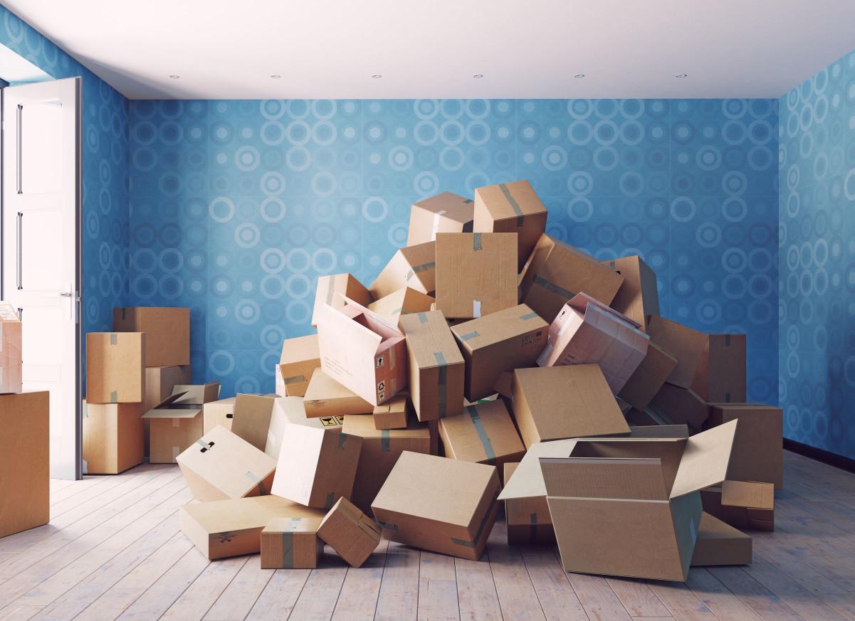 紙箱是害蟲居住的最佳環境,建議盡量將紙箱處理,不要置之不理。