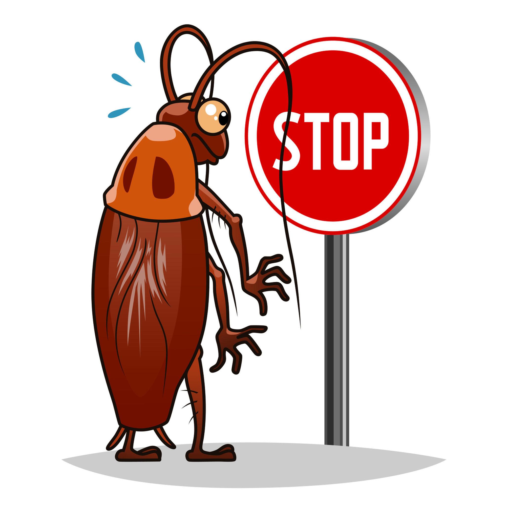 保持環境整潔是預防小蟑螂出沒最基本的方式,且避免雜物堆放。此外未食用完畢的食物也盡量密封,桌面、水槽等地方也盡量避免有水殘留,將食物與水斷絕之後,蟑螂便很難繼續生存。