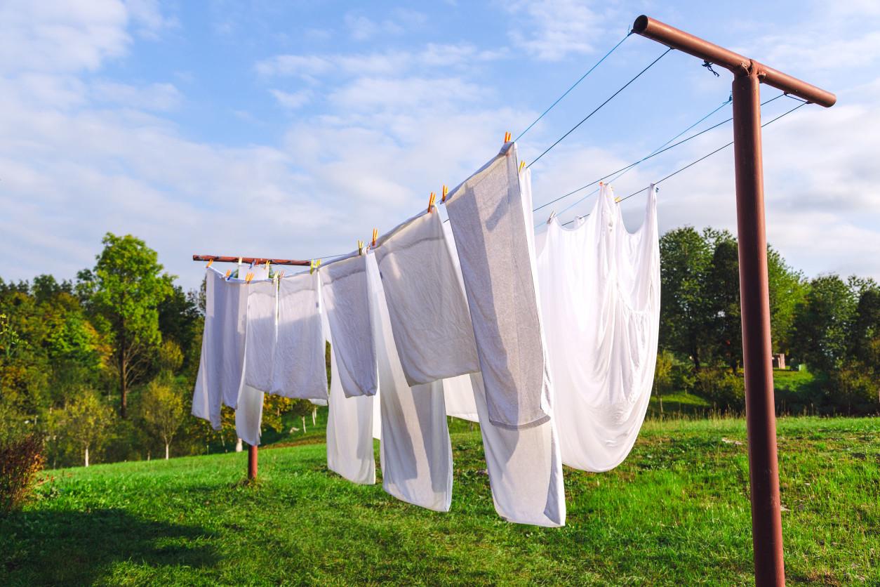 已經進入夏季,正是蟎蟲滋生的旺季,性好溫溼的塵蟎喜歡寄居在棉被寢具上,趁著天氣好應將被子拿出去曬曬太陽