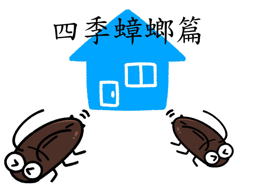 【四季蟑螂防治篇】住宅無所不在,居家害蟲之首:蟑螂