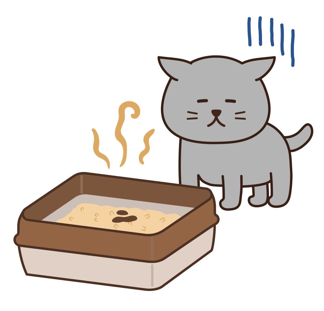 我想應該有很多人因為野貓的糞便而感到困擾吧。總是在同一個地方,臭味難聞。而且,喜愛乾淨的貓,經常喜歡在乾爽的沙子、泥土、石子地上排放糞便。