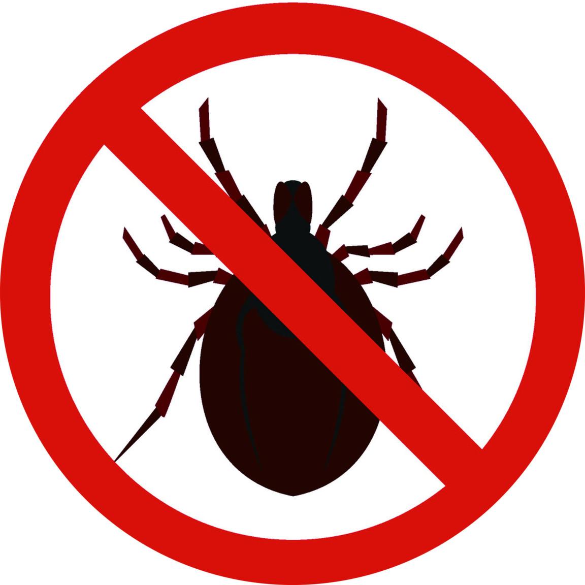 螨蟲與床蝨的體液接觸人的皮膚容易引發皮疹、過敏