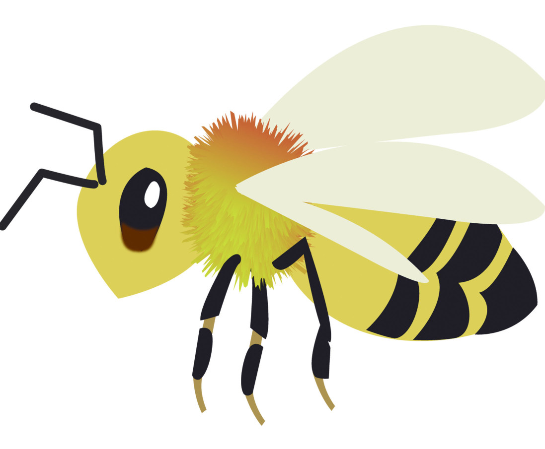 野外遇上蜜蜂倒是可以盡速避開,但倘若是家中出現蜜蜂,甚至是蜂巢呢?若是僅遇上一、兩隻落單的蜜蜂還好處理,開窗慢慢誘導牠回歸野外就好。