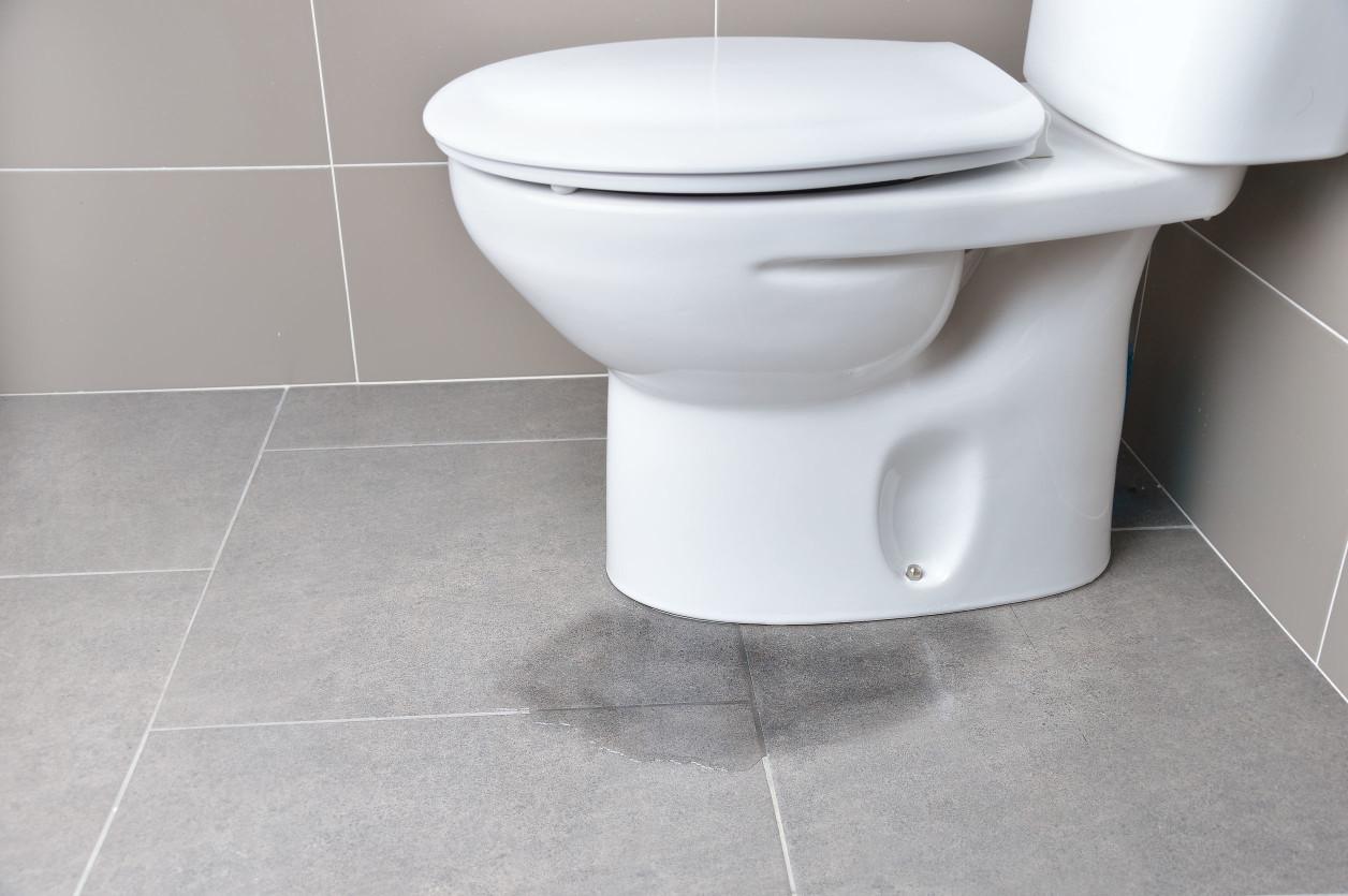 許多家庭吃剩的湯湯水水會選擇直接倒入馬桶中沖掉,既快速又方便。不過,這並不是個好方法,因為人類的食物中富含許多油質,不但會使得管線淤積油垢,也可能將化糞池中的微生物殺死。