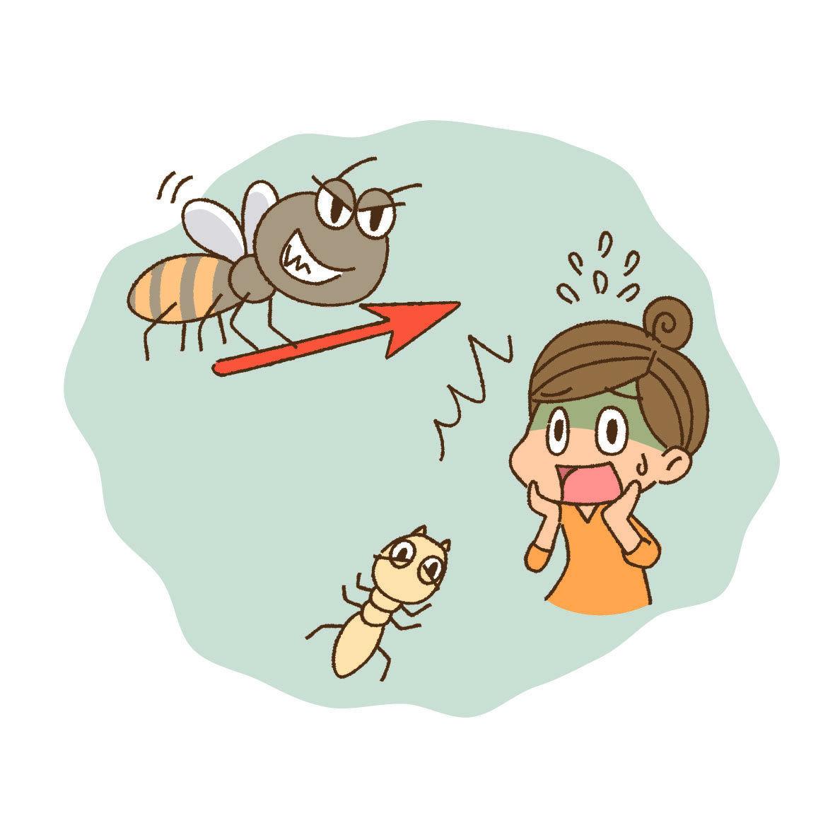 乾木白蟻並不是台灣常見的害蟲種類,那牠們究竟是藉由什麼管道進到家中的呢?有可能裝潢時所用的木頭就已經受到汙染,使用到內部有乾木白蟻的建材,或者買進的家具有問題,早已被跟木白蟻進駐。