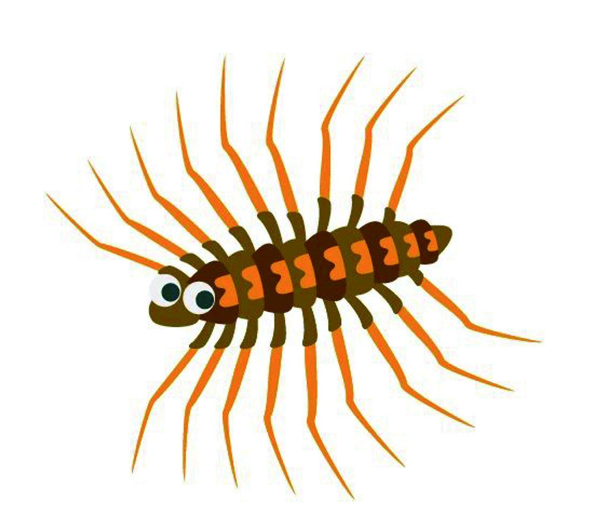 是害蟲還是益蟲?基於蚰蜒會吃其他昆蟲的習性,與蜘蛛一樣常被視為是一種益蟲。然而,蚰蜒嚇人的外表、飛快的移動速度,常常使人飽受驚嚇。更糟的是,蚰蜒也有機會會咬人,將人類當作獵物一般的噴射毒液。