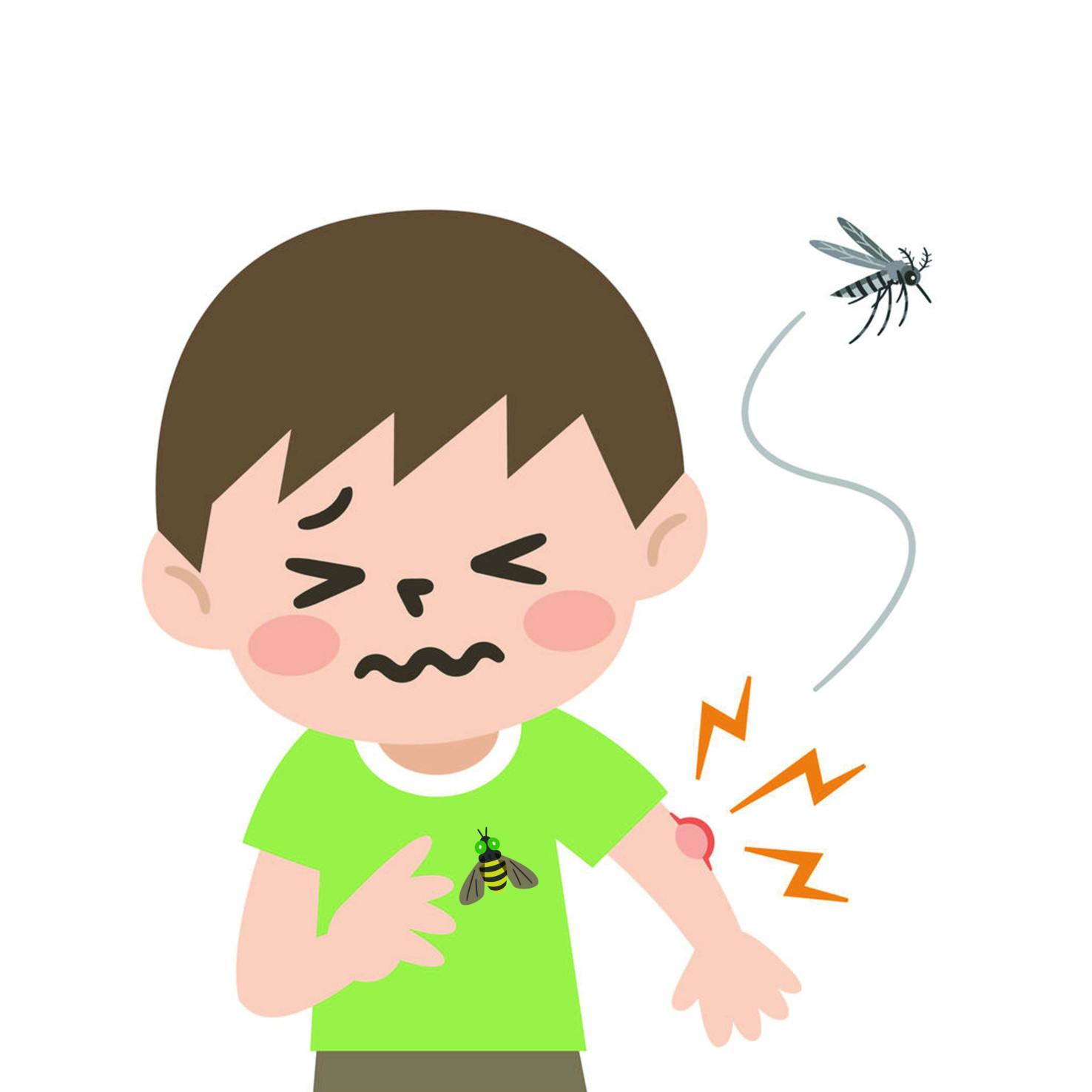 一般來說,公寓的高層很難生長蟲子。昆蟲的起源多在離地面很近的地方,很難靠自己的力量飛到刮大風的高樓層,也很難藉由外牆爬行上去。