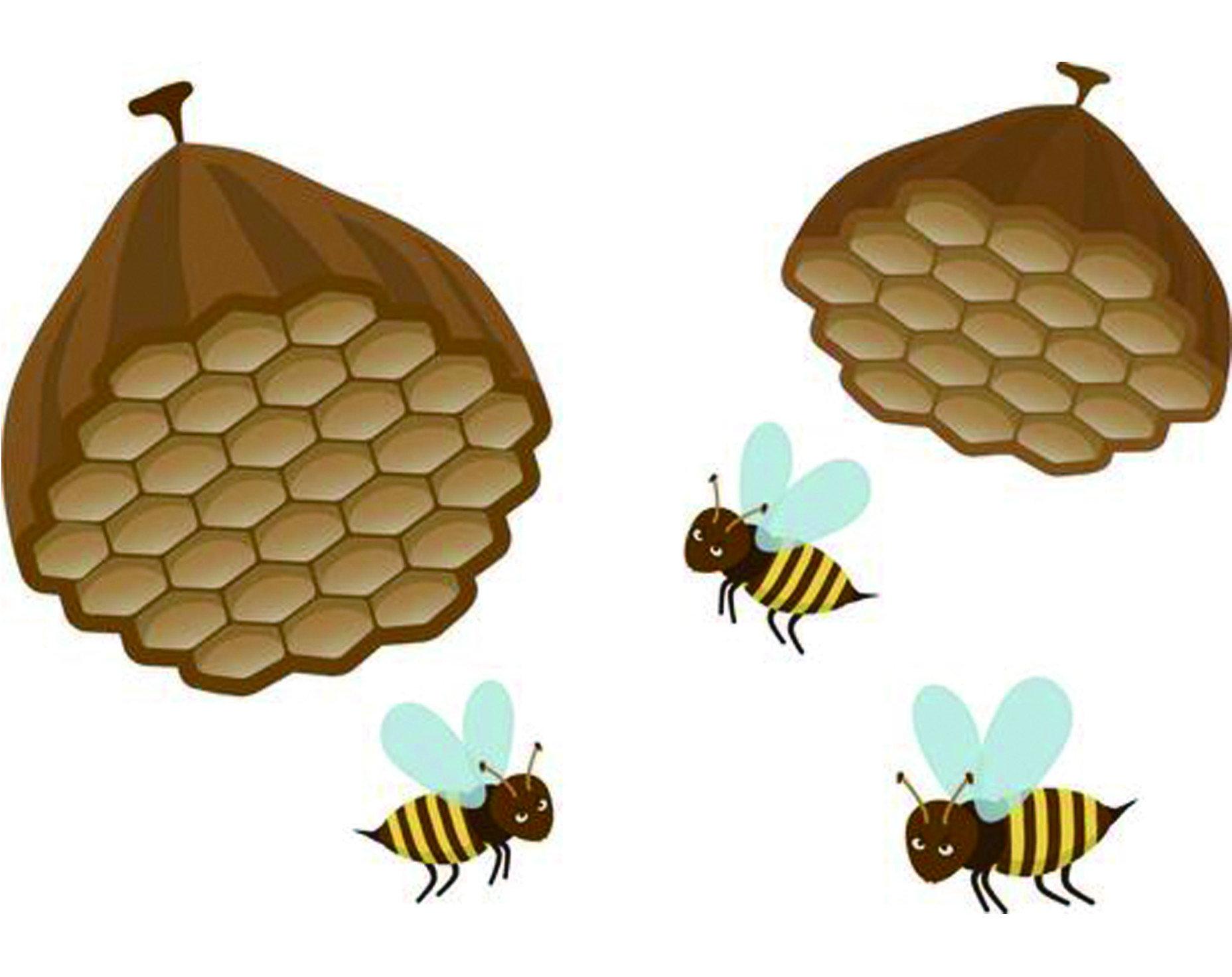 基於長腳蜂溫和的特性,其實遇到長腳蜂時並不用太擔心,保持適當距離即可。 風水上蜜蜂在家附近築巢,意味著即將有收穫到來,對於生意人來說更是吉祥, 不影響安全與生活品質的狀況下不用急著一定要將整個蜂窩剷除;即便不相信風水之說, 還是以互不侵犯為原則,保持雙方的生活空間。另為,常見的長腳蜂還有「雙斑長腳蜂」