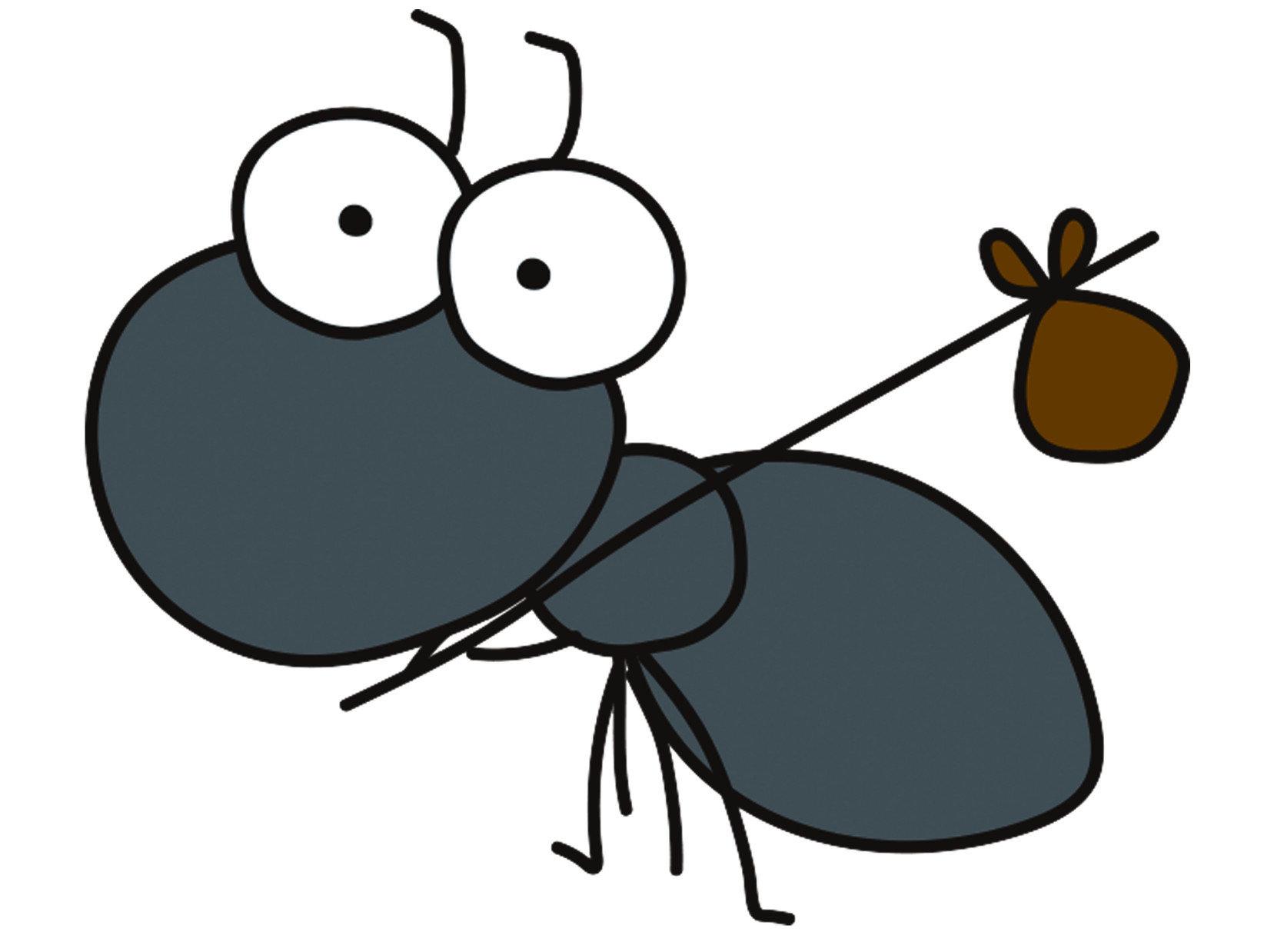 「疣胸琉璃蟻」這個名字是牠的正式名稱,與「雙疣琉璃蟻」是同個物種,牠們更通俗常見的名字,叫做「黑蟻」。而疣胸琉璃這個名字源自於牠明顯凹凸不平的背部,呈現疣狀的樣貌而因此得名。廣泛的分布在整個亞洲的溫暖、潮濕的區域,包括南亞、東南亞、台灣與中國華南地區。