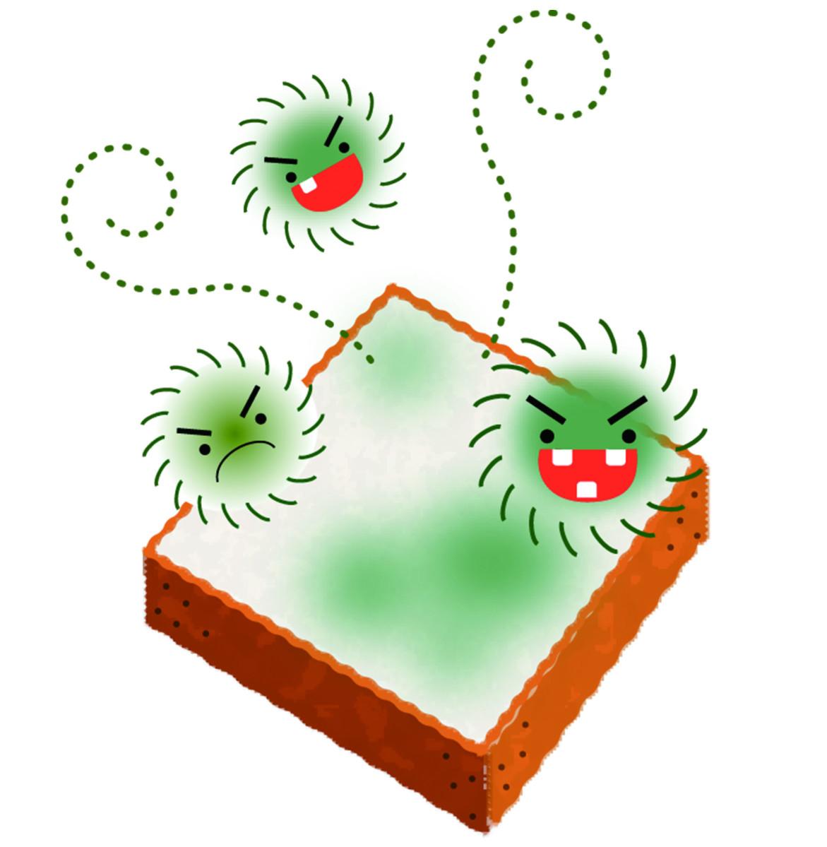 當大量黴菌生成後,「嚙蟲」、「跳蟲」或「酪螨」也可能隨之大量孳生。此時的室內環境,可能一天要有數十、數百隻麵包蟲出沒。更糟的是,伴隨而來的嚙蟲、跳蟲或酪螨的數量會更為驚人, 而且會蔓延至整個建築,難以根除。