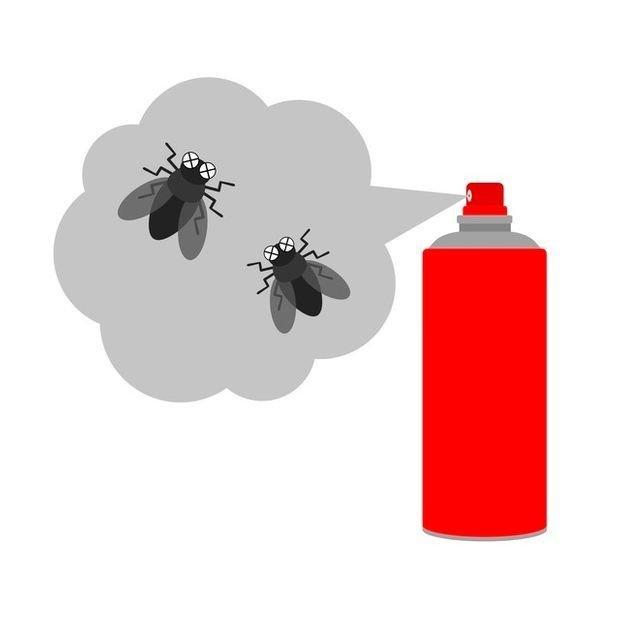 市面上有許多以除蟲為目的的藥劑噴霧,大家都能輕易購買使用,也確實能殺死大部分害蟲。然而,這類化學藥劑多半對人體健康有害,不被允許用於食品加工場所中,遑論是直接接觸我們的食物了。
