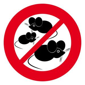 『滅鼠』老鼠防治施工實績