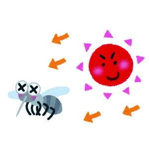 【夏季害蟲篇】炎炎夏季到來,防止擾人蚊蟲滋擾的四種有效方式。