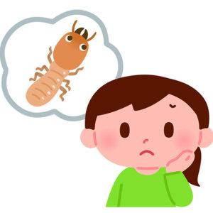 『除/滅白蟻問題』家中出現白蟻,委託除白蟻專家防治常見問題 !