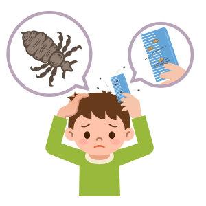 『除頭蝨』頭癢難耐,掀開頭髮百隻頭蝨蠕動