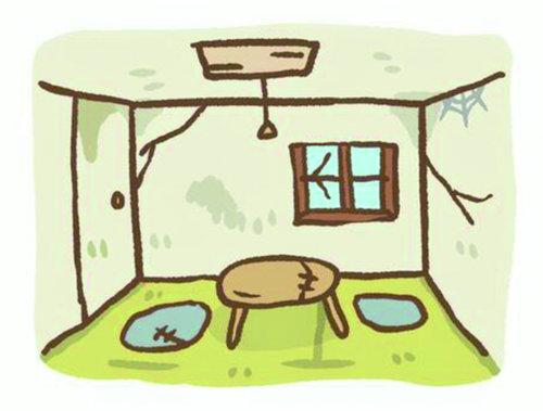 【除粉螨】潮濕處大量出現像麵粉的白點,千萬不能放任不管 !